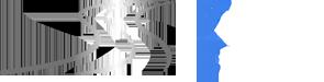 Profi Express Logo